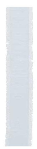 Geschenkband - NASTRO FRANGE - 22 mm x 25 m - Dekor Bianco